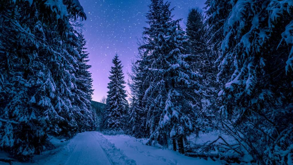 snow-Balletti-Park-Hotel-San-Martino-al-Cimino-Viterbo